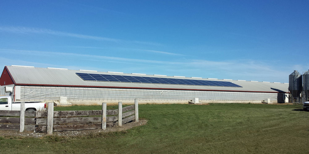 Solar power installation on the roof of a hog confinement in Keota, IA